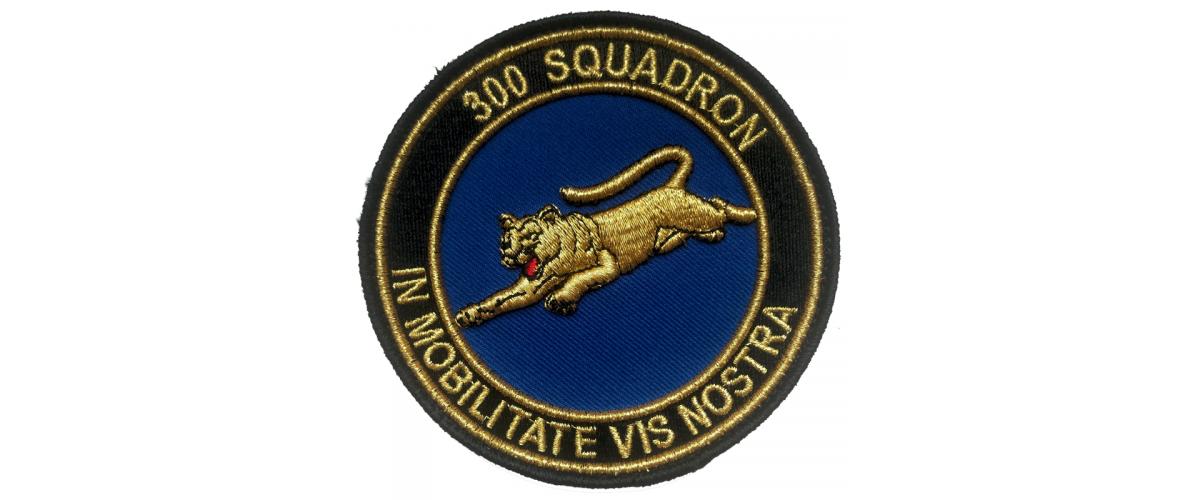 Patch 300 Squadron Goud